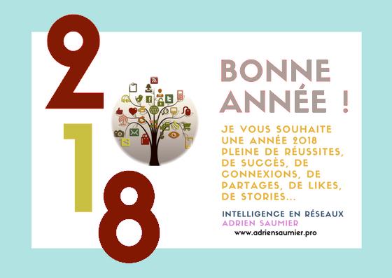 voeux2018-ieR-Saumier