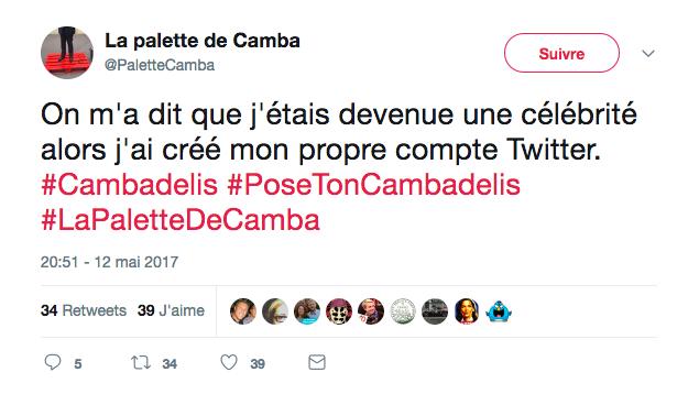 camba-La palette de Camba sur Twitter On m a dit que j étais devenue une célébrité alors j ai créé mon propre compte Twitter. Cambadelis PoseTonCambadelis LaPalette